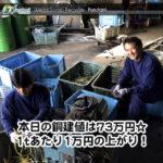 【銅相場情報2014.4.1】