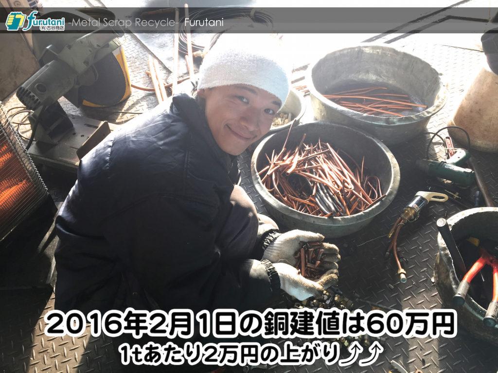 【銅相場情報 2016.2.1】久しぶりに60万円台に回復したぞ!♬