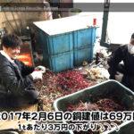 【銅相場情報 2017.2.6】1tあたり3万円下がりの69万円に改定⤵⤵⤵