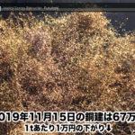 【銅建値情報 2019.11.15】1tあたり1万円下がりの67万円に改定⬇