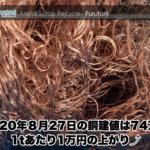 【銅相場情報 2020.8.27】1tあたり1万円上がりの74万円に改定☆⤴